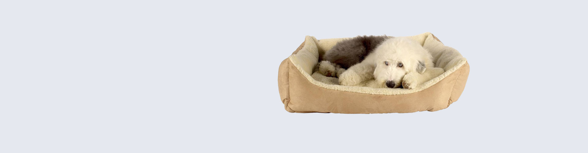 Trojan water proof dog beds