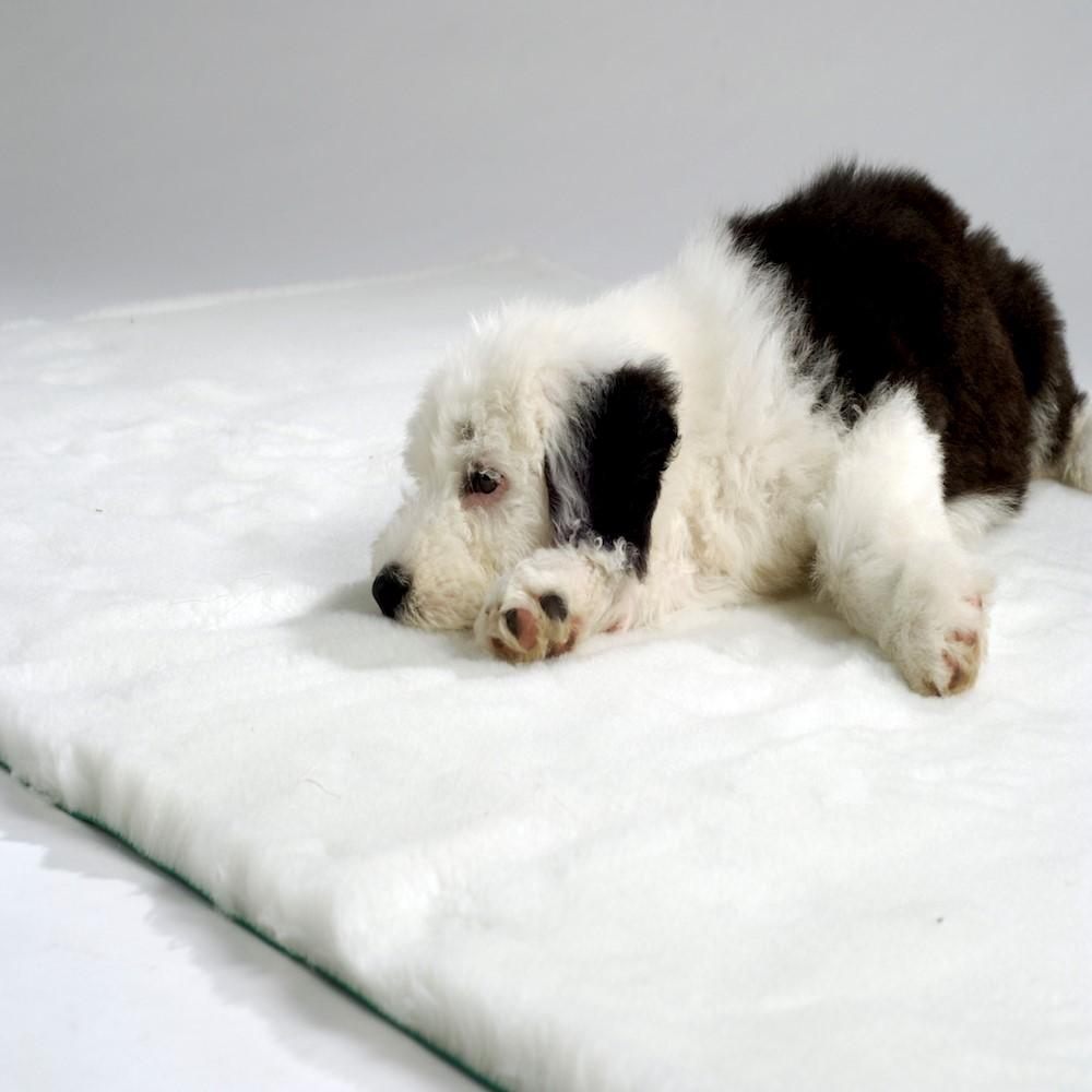 Traditional Vet Bedding White