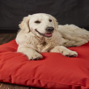 Trojan Mattress Waterproof Dog Bed   Red