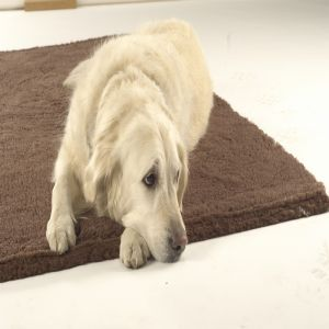 Senior Gold 7+ Vet Bedding Brown