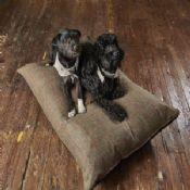 Tweed Wool Matress Dog Bed - Dark